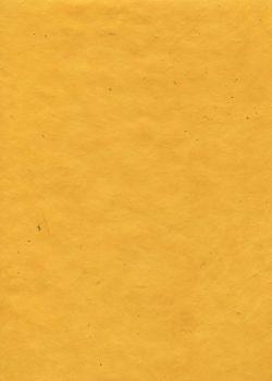 Lokta jaune (50x75)