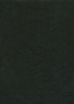 Lokta noir (50x75)