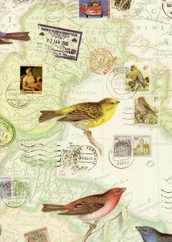 Le voyage et les oiseaux (70x100)