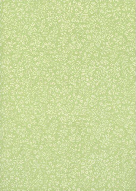 Les baies fond vert tendre (70x100)
