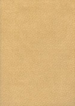 Raphia beige (50x70)