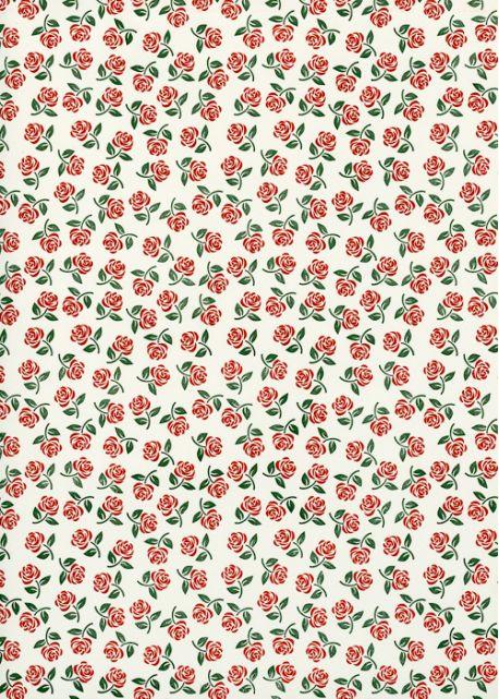 Semis de petites roses rouges (70x100)