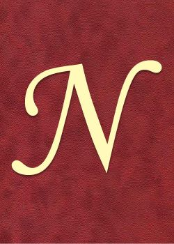 "Lettre ""N"" à embosser"
