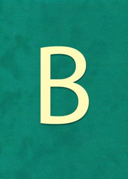 "Lettre ""B"" à embosser"