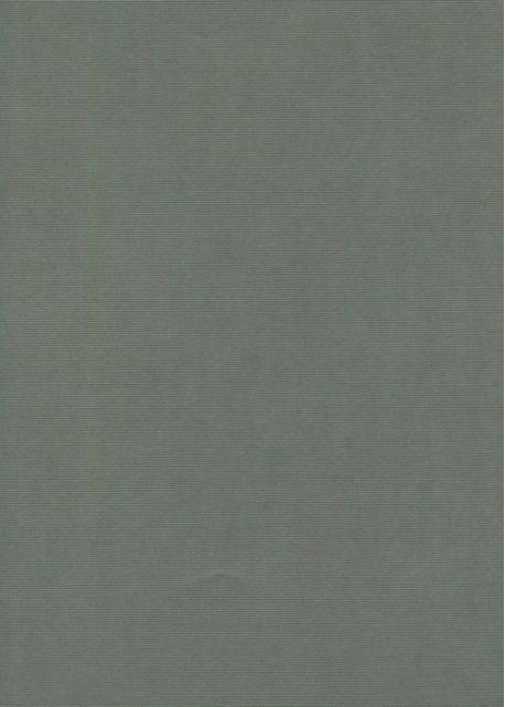 gris souris (70x100)