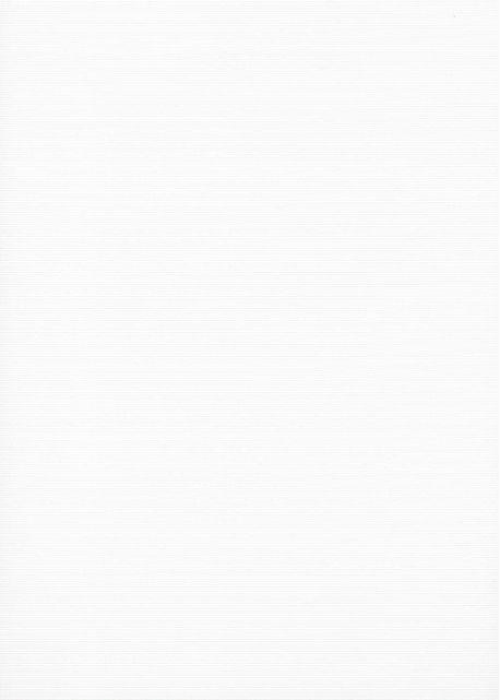 Tamis blanc (70x100)