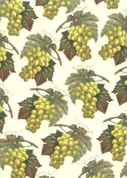 Les grappes de raisin vert jaune (70x100)