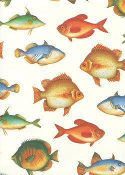 Les poissons multicolores (70x100)