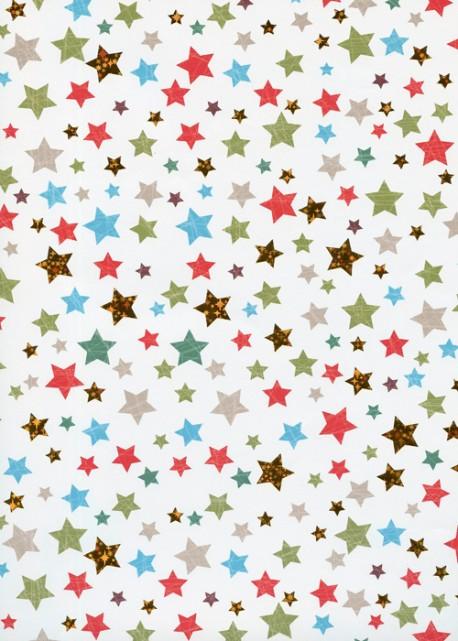 Les étoiles de Noël réhaussé or (48x68)