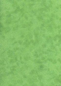 Simili cuir velours Zeste vert tendre (70x100)