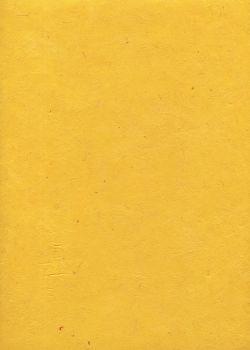 Lokta jaune citron (50x75)