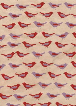 Lokta les oiseaux (50x75)