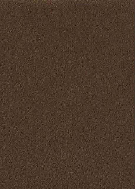 Skip grain fin nacré bronze n°11 (65x100)