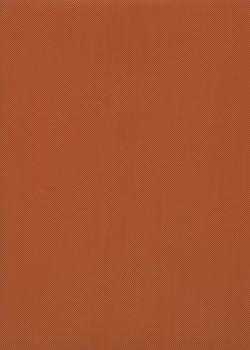 Skip grain DAMIER carotte n°18 (65x100)