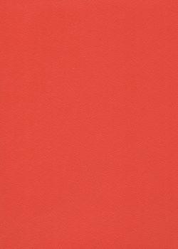 Skip grain fin vermillon n°20 (65x100)