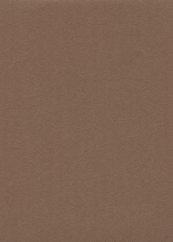 Skip grain fin café n°17 (65x100)