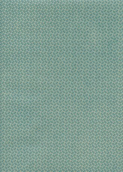 Roma turquoise fond gris (50x70)
