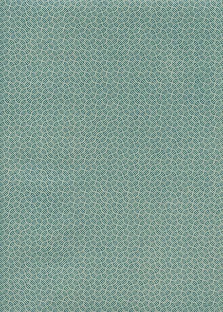 Roma turquoise fond gris (50x70)