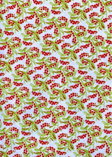 Les groseilles (50x70)