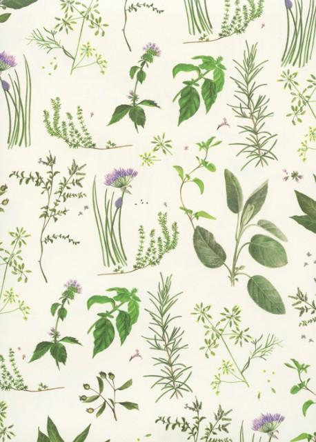 Les herbes aromatiques (70x100)