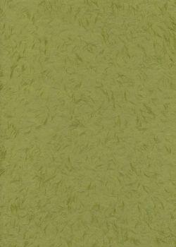 Véritable Obonai vert (78x53)