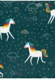 La nuit des licornes (68x98)