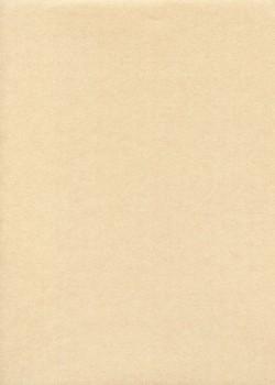Papier japonais irisé-Gira pearl beige (55x80)
