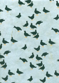 Lokta les colombes fond bleu gris (50x75)
