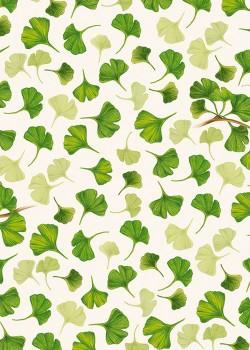 Les feuilles de Ginkgo biloba (70x100)