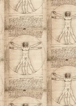 Epure de Léonard de Vinci (70x100)