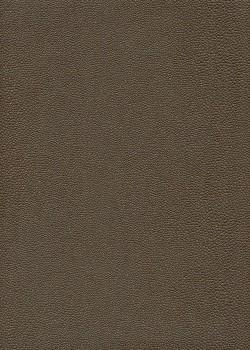 "Papier imitation ""galuchat"" irisé bronze (50x65)"