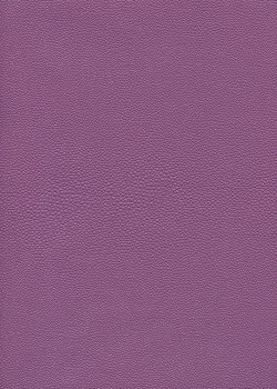 """Papier imitation """"galuchat"""" irisé pourpre (50x65)"""