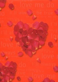 Coeur de pétales (65x95)*