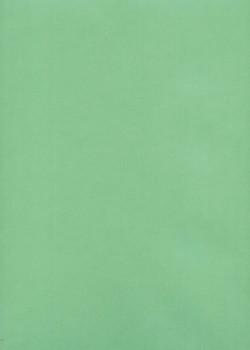 Calque 200g vert tendre (50x65)*