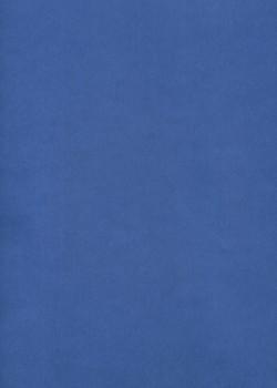 Calque Canson® 200g bleu (50x65)*