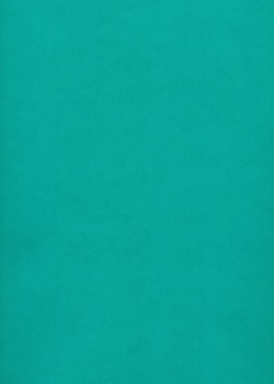 Calque Canson® 200g turquoise (50x65)*