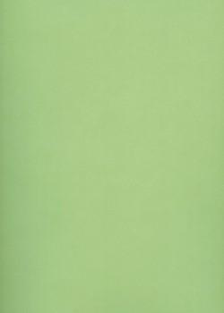Calque Canson® 200g tilleul (50x65)*