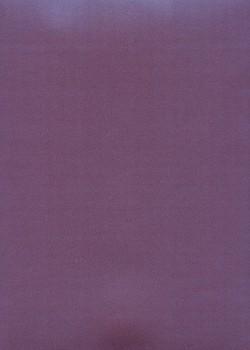 Calque Canson® 200g prune nacré bleu (50x65)*