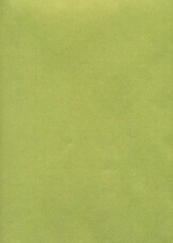 Calque Canson® 200g kiwi nacré doré (50x65)*