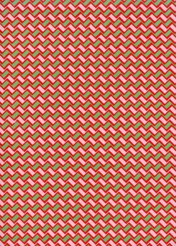 Les zig zag (50x65)