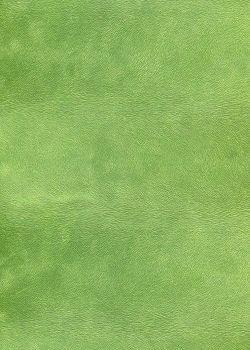Simili cuir velours Pelage vert tendre (70x100).