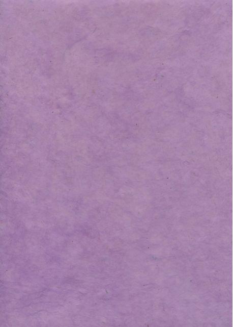 Lokta lilas (50x75)