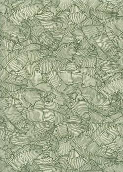 Feuilles de bananier ton vert (50x70)