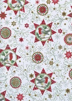 Oiseaux et étoiles de Noël réhaussé argent (50x70)