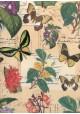 Botanique et papillons (70x100)