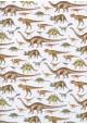 Planche de dinosaures (50x70)