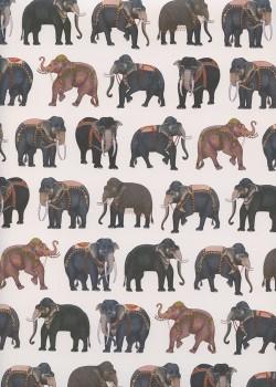 Le défilé d'éléphants (50x70)