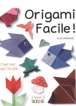 Origami facile : C'est moi qui l'ai plié !