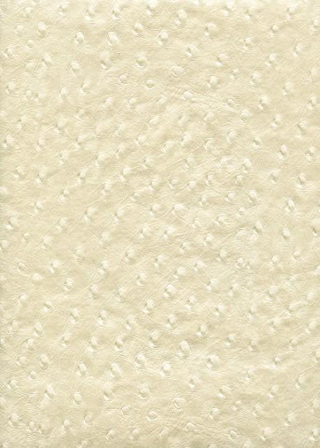 """Papier imitation """"autruche"""" nacré ivoire (56x76)"""