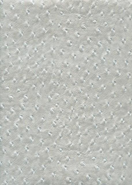 """Papier imitation """"autruche"""" nacré argent (56x76)"""